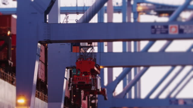 Container Cranes in Motion