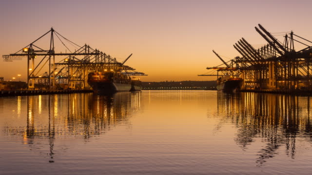 Container cranes working during sunset 4K TIME LAPSE