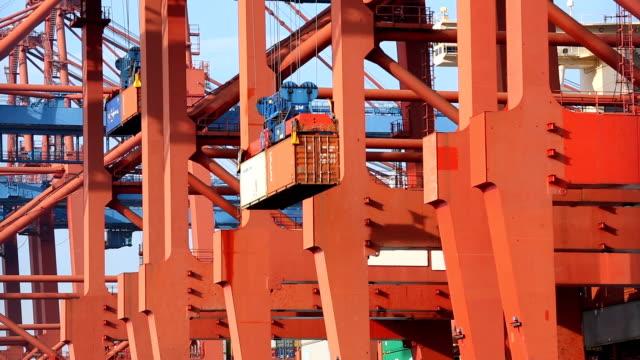 container wird geladen - schiffsfracht stock-videos und b-roll-filmmaterial