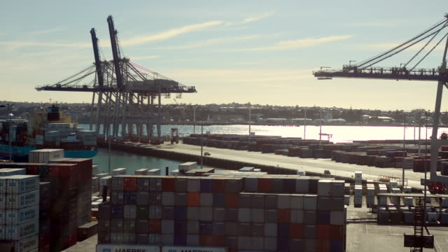 vídeos y material grabado en eventos de stock de tl ha ws container ship arriving at ports of auckland and being unloaded by cranes and straddle carriers/ auckland, new zealand - pórtico automotor