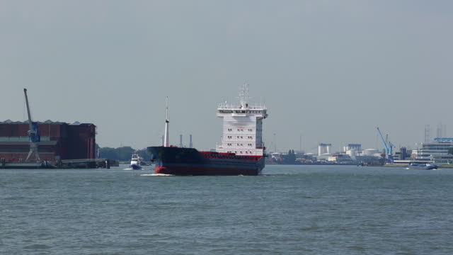 container ship in rotterdam - rotterdam stock videos & royalty-free footage