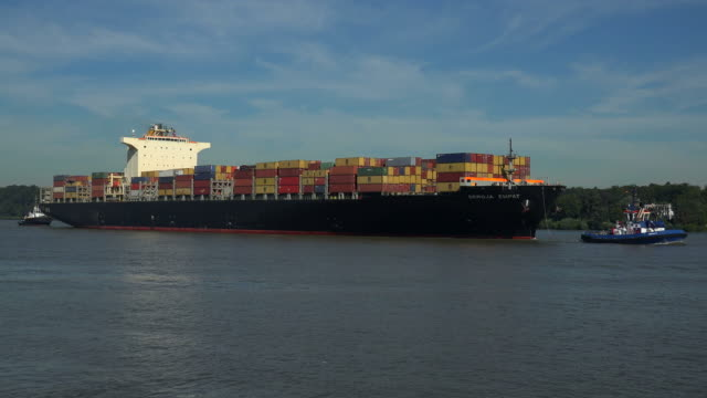 Container vessel on Elbe River near Hamburg-Finkenwerder, Hamburg, Germany