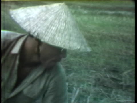 continued fighting in the mekong delta in vietnam diminishes the rice crop in 1974. - 南ベトナム点の映像素材/bロール