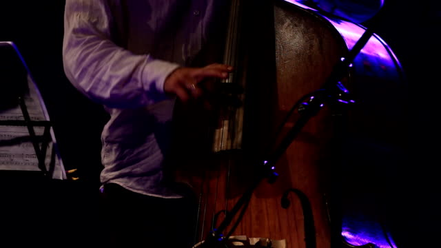 contra bass player closeup - composer stock videos & royalty-free footage
