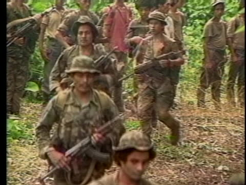 contra troops walk through the jungle in nicaragua. - ニカラグア点の映像素材/bロール