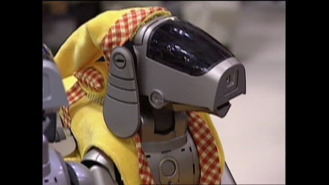 contributor approval required for all uses an owner dressed aibo robot like a doll - sony stock videos & royalty-free footage