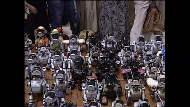 contributor approval required for all uses many aibo robots gathered in a variety of outfits - sony stock videos & royalty-free footage