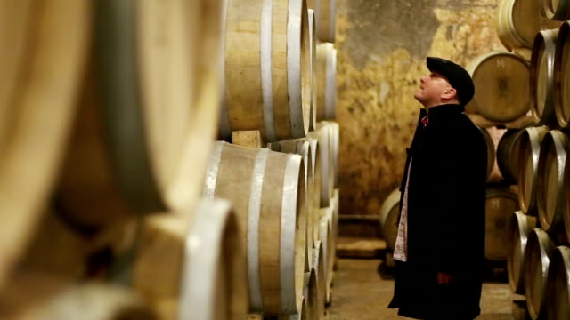 controlling wine cellar and barrels - wine stock videos & royalty-free footage
