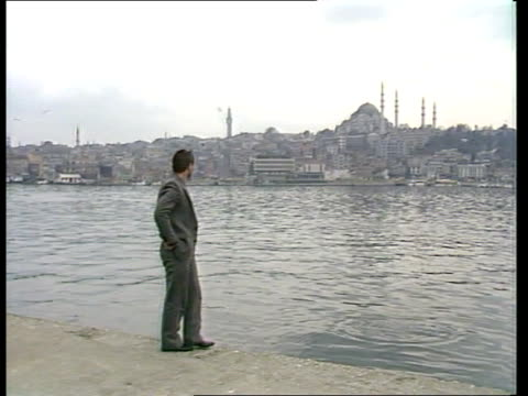 controversy over 'kidneys for sale'; turkey: istanbul: ext ferhat usta, man who claims to have sold kidney for, stands on river bank and throws stone... - human kidney点の映像素材/bロール