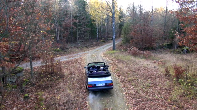 A convertible travels on a dirt road in an autumn forest.