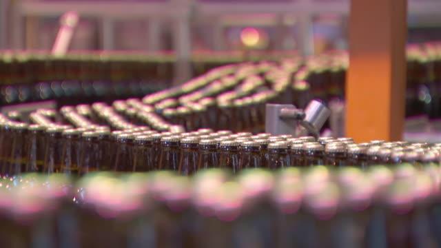 cu r/f conveyer belt at bottling plant / gauteng, south africa - 豊富点の映像素材/bロール