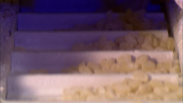 a conveyor belt moves jelly bean centers. - ジェリービーンズ点の映像素材/bロール