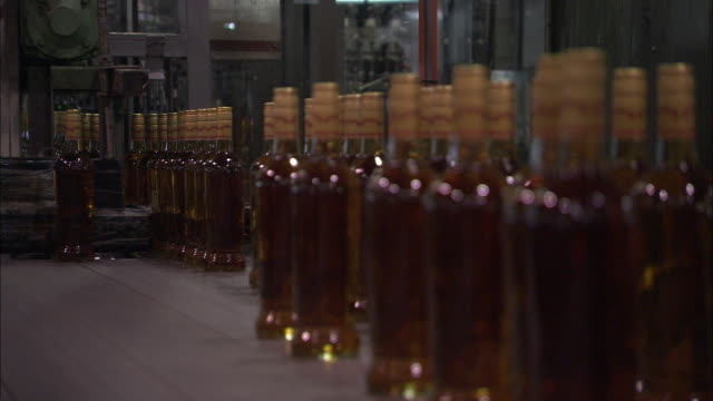 a conveyor moves bottles of rum. - rum stock videos and b-roll footage