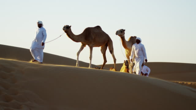 convoy of camels with owners travelling saudi desert - ベドウィン族点の映像素材/bロール