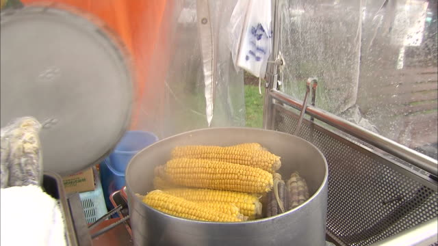a cook lifts the lid of a kettle where sweet corn steams - lid stock videos and b-roll footage