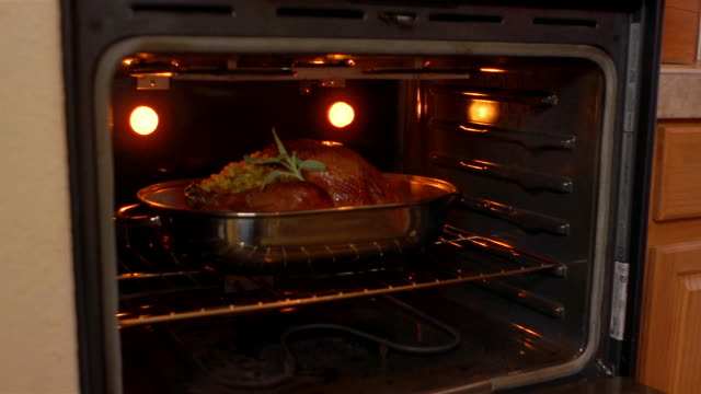 a cook removes a roast turkey from her home oven. - roast turkey stock videos & royalty-free footage