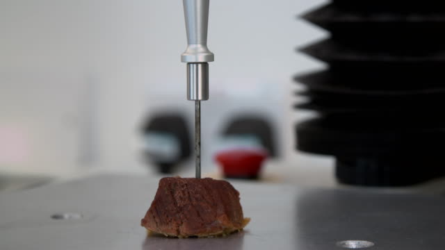 cooked beef is tested in a lab - food stock videos & royalty-free footage