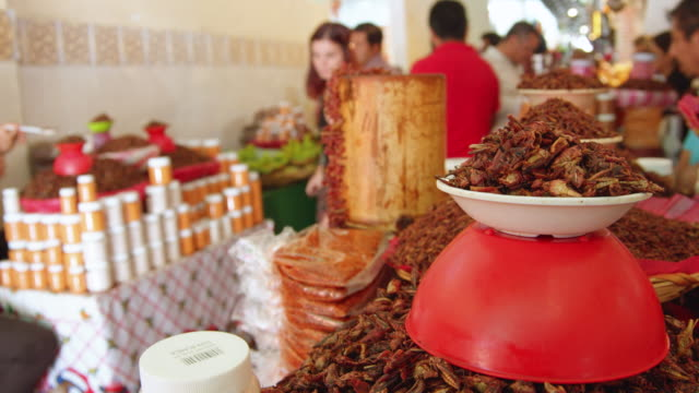 cooked chapulines/grasshoppers for sale at a food store in oaxaca, mexico - market stall stock videos & royalty-free footage