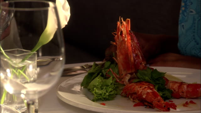 a cooked lobster fills a dinner plate. - lobster stock videos & royalty-free footage