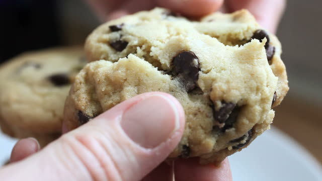 cookie break - chocolate chip cookie stock videos and b-roll footage