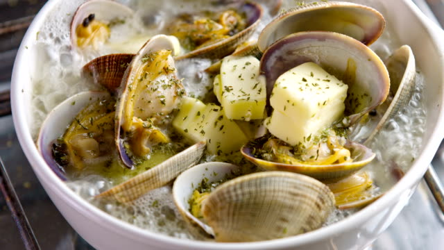 cooking clam on oven top - clam seafood stock videos and b-roll footage