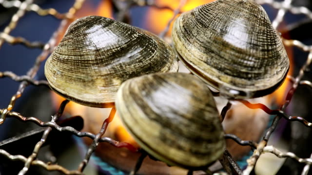 cooking clam - clam seafood stock videos and b-roll footage