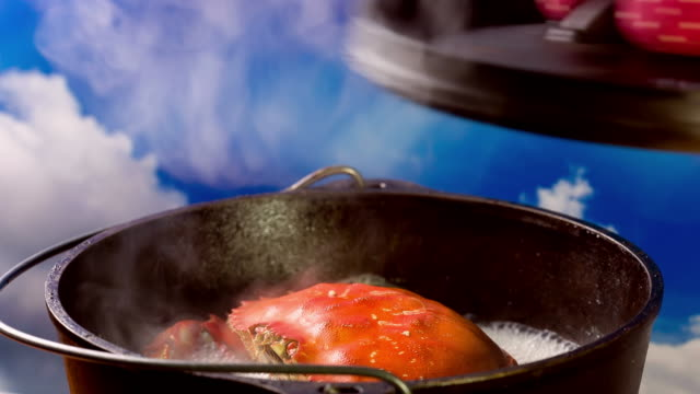cooking crab - cast iron stock videos and b-roll footage
