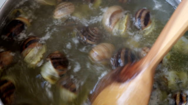 cooking edible snails - snail stock videos & royalty-free footage