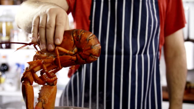 cooking fresh healthy lobster in domestic kitchen - lobster stock videos & royalty-free footage