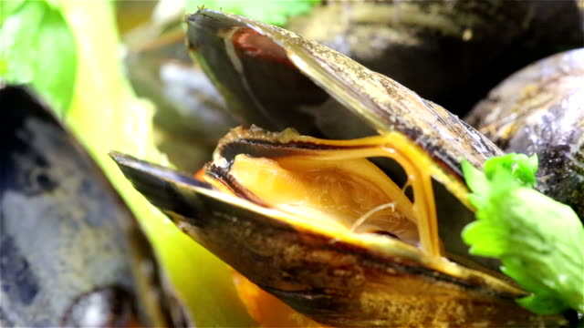 Cooking Mussel