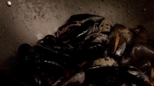 料理のムール貝 - ムール貝点の映像素材/bロール