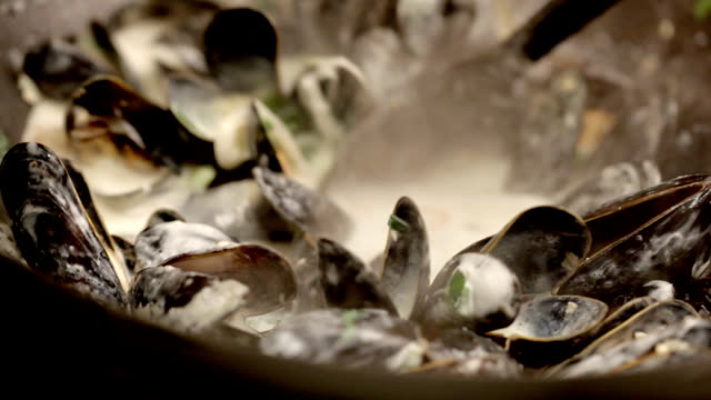 cooking mussels - medium group of objects stock videos & royalty-free footage