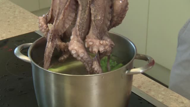 cooking octopus - dipping in boiling water - cooking pan stock videos & royalty-free footage