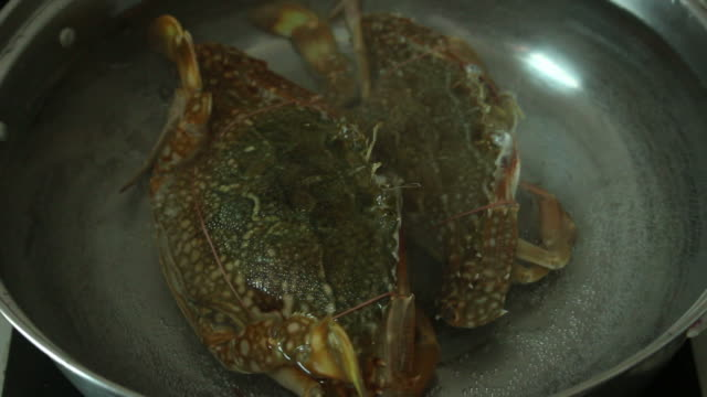 cooking seafood - chowder stock videos and b-roll footage