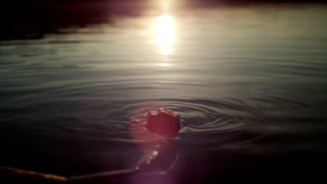 vidéos et rushes de rafraîchir dans le lac. coucher de soleil - reflet