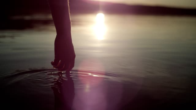 cooling off in the lake. sunset - water video stock e b–roll