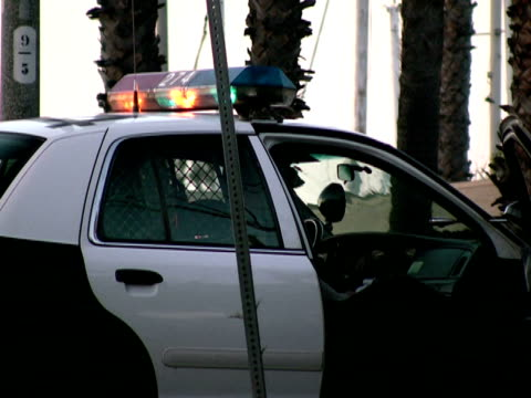 cop in police car at crime scene - police car stock videos & royalty-free footage