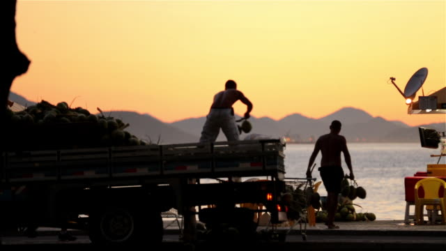 copacabana beach vendors unload coconuts from truck at dawn - routine stock videos & royalty-free footage