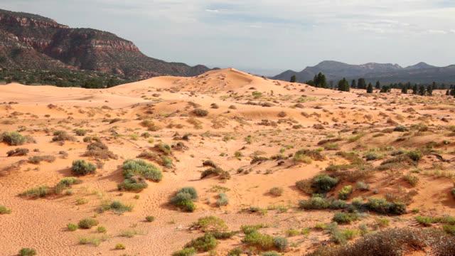 """""""coral pink sand dunes, utah"""" - sandy utah stock videos and b-roll footage"""
