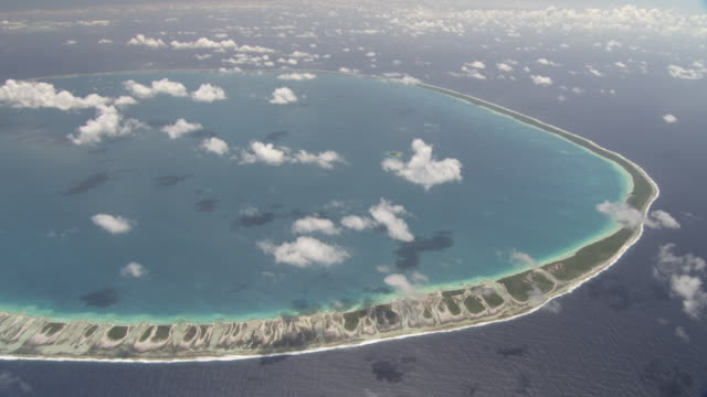 Coral reef at edge of tropical atoll lagoon, Rangiroa, French Polynesia