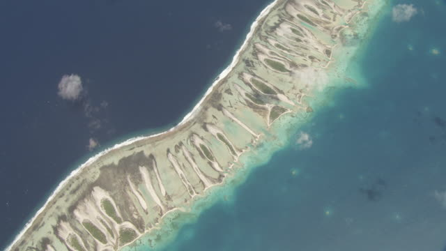 Coral reef at edge of tropical atoll lagoon, Rangiroa, French Polynesia