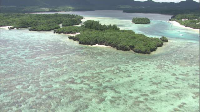 Coral reef, Ishigaki Island, Okinawa Prefecture, Aerial shot