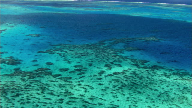 WS ZO AERIAL Coral Sea and Great Barrier Reef, Cairns, Queensland, Australia