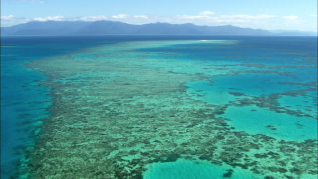 ws td aerial coral sea under blue sky, cairns, queensland, australia - barriera corallina video stock e b–roll