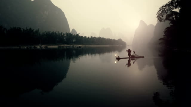 cormorant fisherman - bamboo plant stock videos and b-roll footage