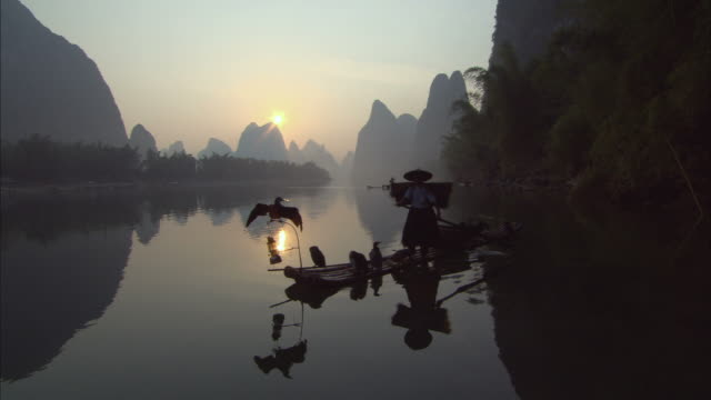 ms, cormorant fishermen presenting cormorant to camera on li river at dusk, guangxi province, china - metal ore stock videos & royalty-free footage