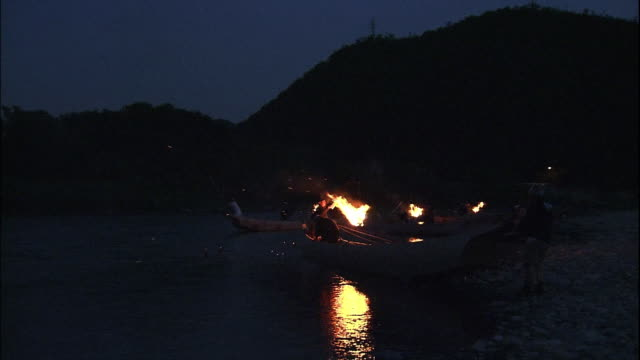 stockvideo's en b-roll-footage met cormorant fishing boats at the river bank. - aalscholvers