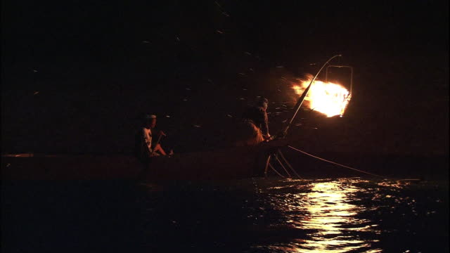 stockvideo's en b-roll-footage met cormorant fishing boats sailing down the stream of nagara river. - aalscholvers