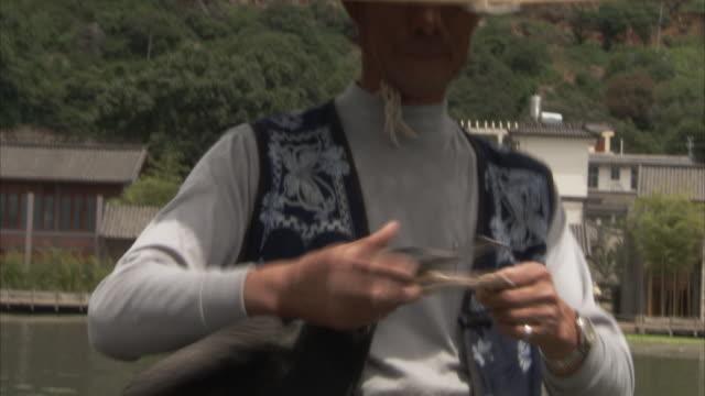 stockvideo's en b-roll-footage met cormorant fishing, dalai lake, yunnan, china  - cormorant