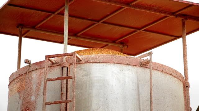 vidéos et rushes de hd: maïs machine à séchage rapide - silo